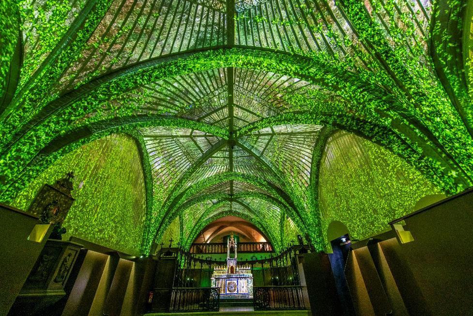 Compostela - ©Luc Olivier